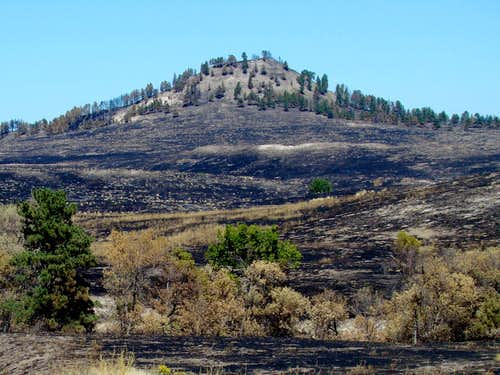 Roundtop Peak after 2012 fire