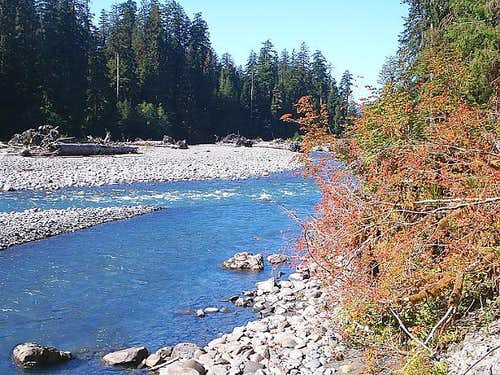 Hoh River Downstream