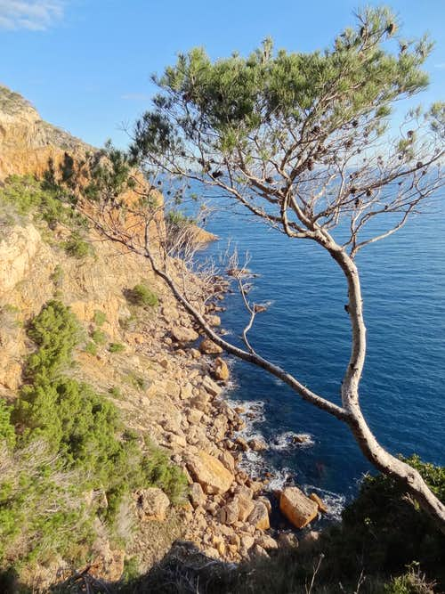 Purple cliffs of Cap de Begur in the morning sun