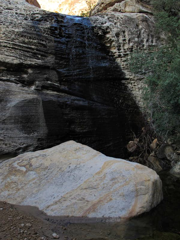 Waterfall in North Fork Pine Creek Canyon