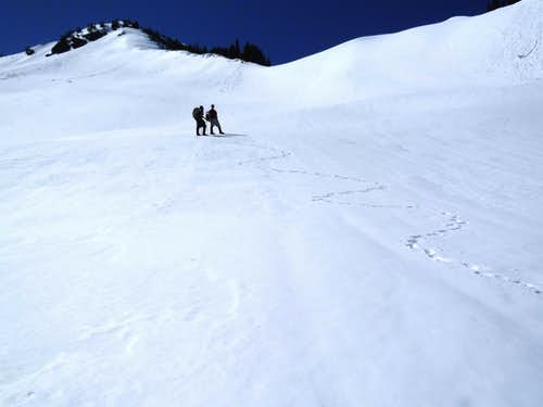 Near Top Of Open Gully