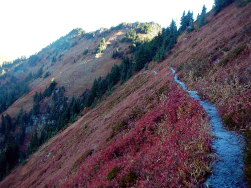 Wenatchee Ridge Trail