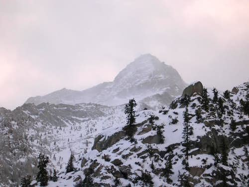 Approach to Whitney in Winter