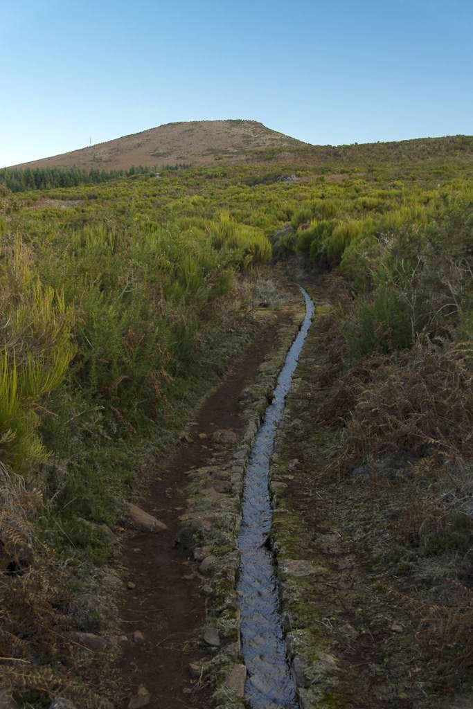 The first Levada