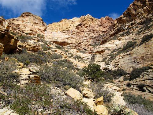 Drainage Above Black Velvet Canyon