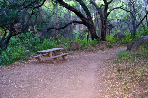 Resting spot and bench