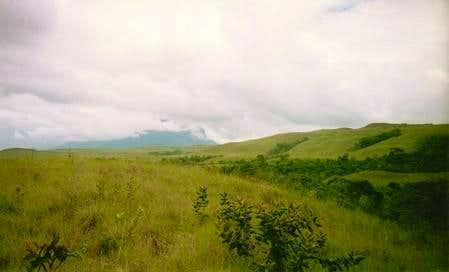 Trail near Rio Tex in the...