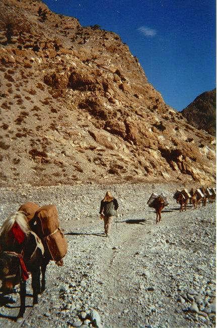 Walking up the Kali Gendaki...