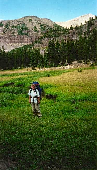Mt. Agassiz from Naturalist...