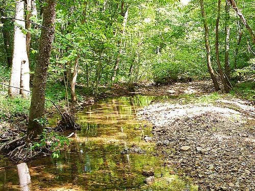 Joes Creek