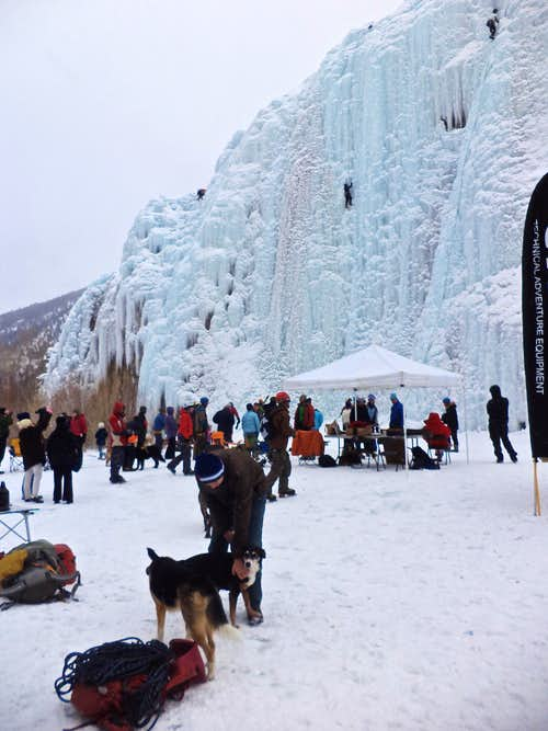 Duchess in the ice park