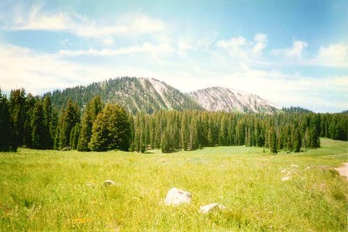 Moffit Peak from the north.