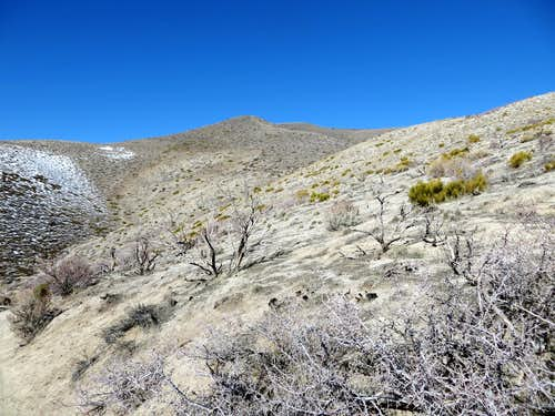 Looking up at the lower slopes of Peak 6345 above the Voltaire Canyon