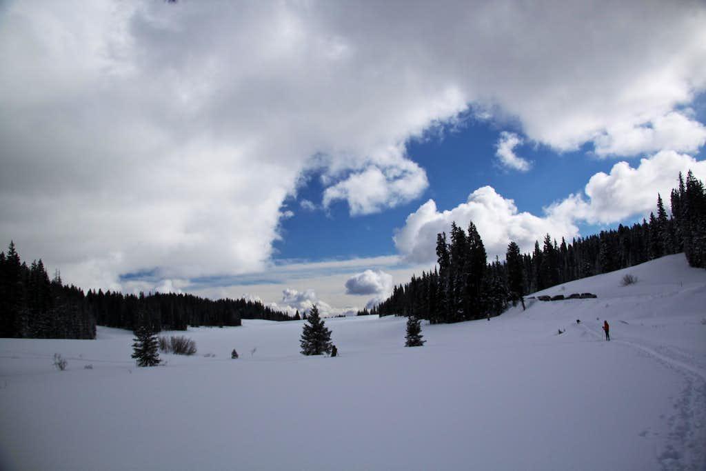 Ward Lake Ski Trails