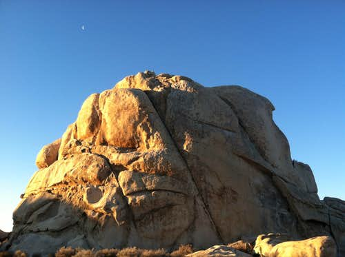 The Left Ski Track of Intersection Rock at dawn, Joshua Tree National Park