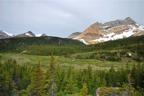 meadows west of Slide Lake