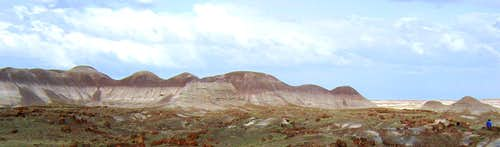 In Petrified Forest National Park