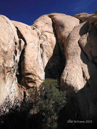 Bighorn Mating Grotto