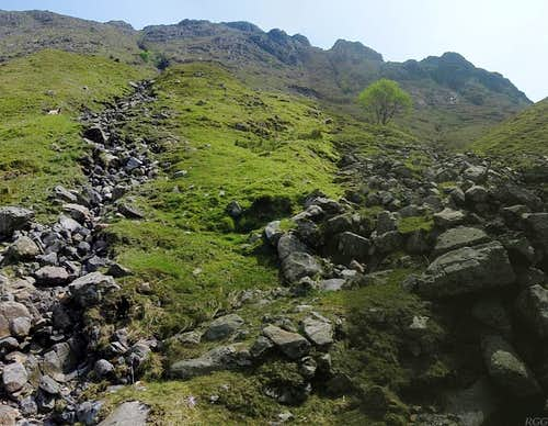 Looking up the Allen Gill from the Grains Gill