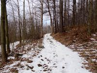 The trail to Ostrzyca