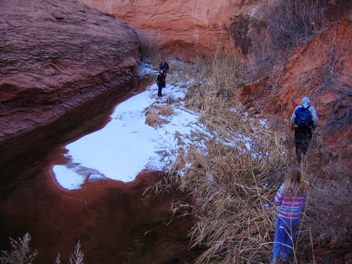 Snow in the canyon