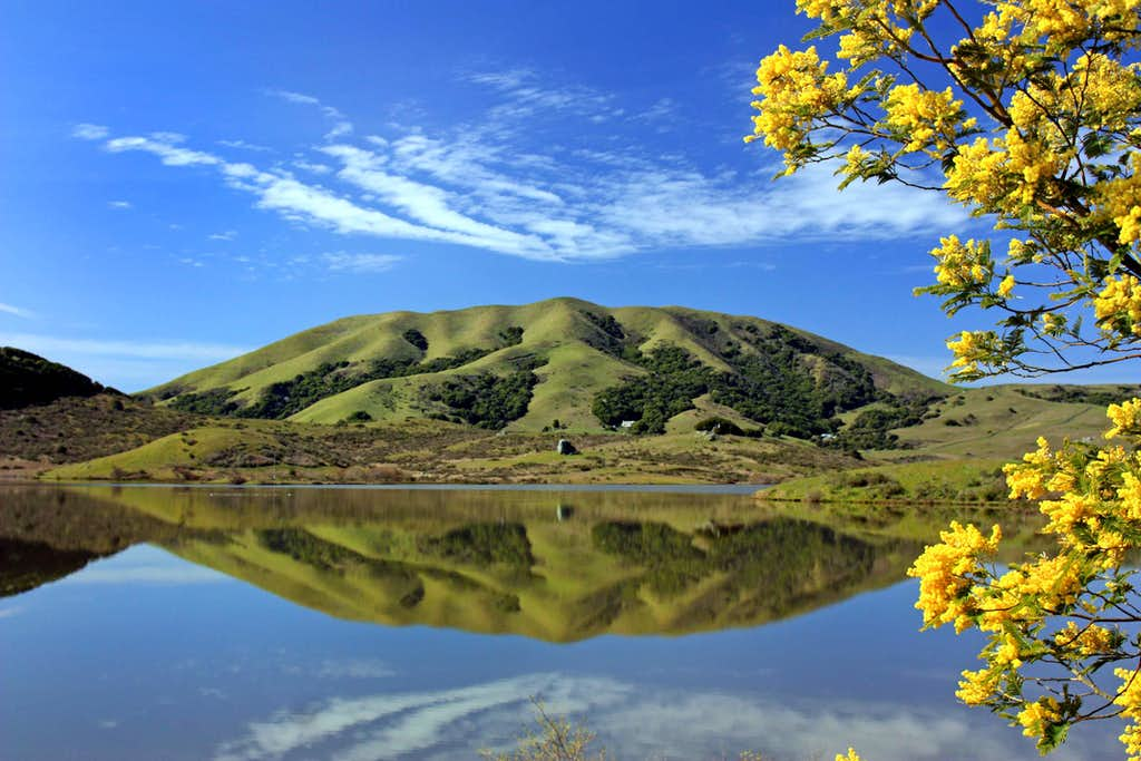 Black Mountain from Nicasio Reservoir