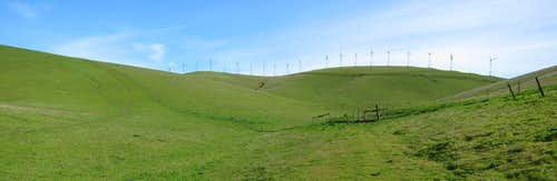 Windmills on Brushy Peak