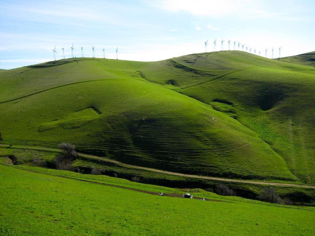 Altamont Hills