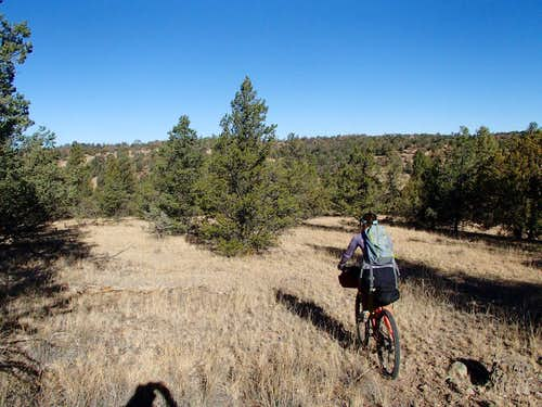 Bikepacking in remote southern New Mexico