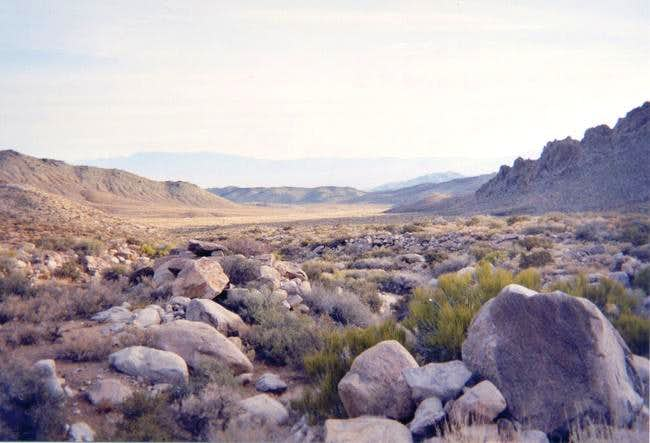 A view of the classic Mojave...