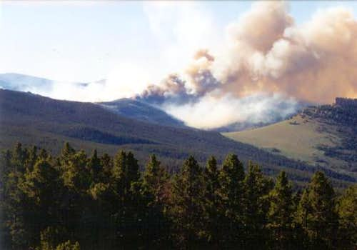 The July 2002 forest fire in...