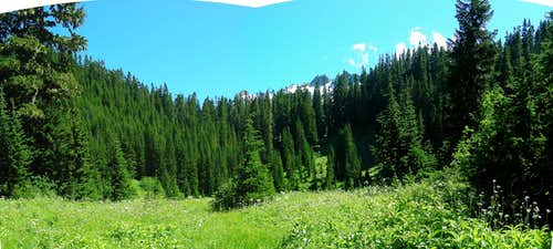 Meadow below Salix Pass