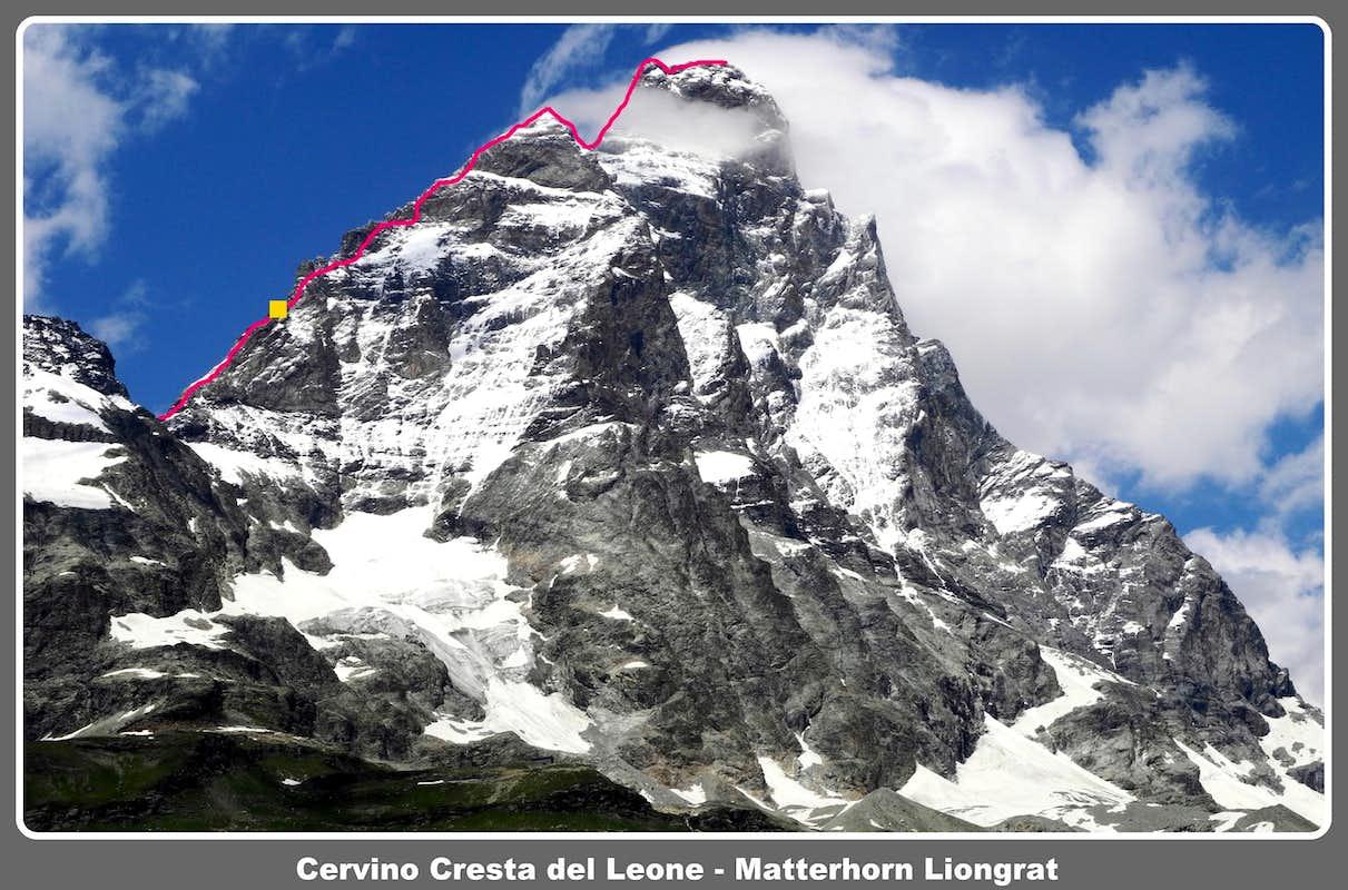 Cresta    del Leone  Liongrat topo   Photos     Diagrams      Topos   SummitPost