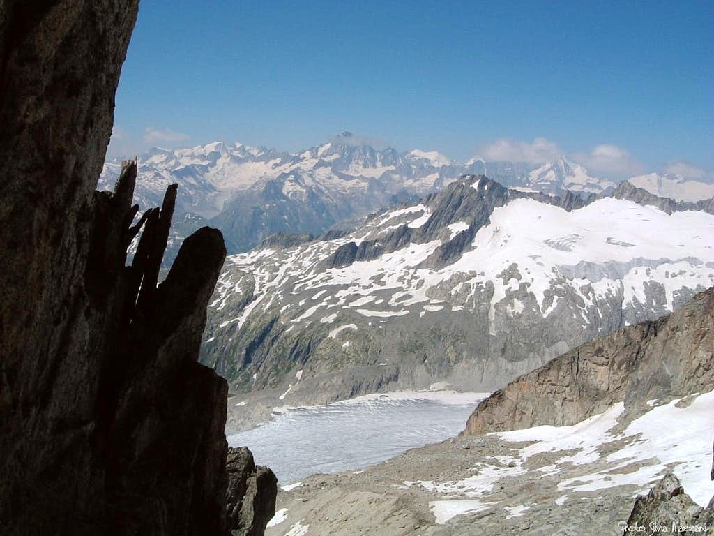 Gross Furkahorn summit view toward Berner Oberland and Rhonegletscher