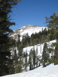 Mt. Reba