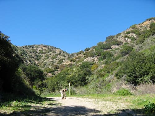 Beginning of Wildwood Canyon Trail Hike