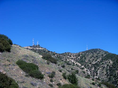 Looking to Verdugo Peak from Wildwood Canyon Trail