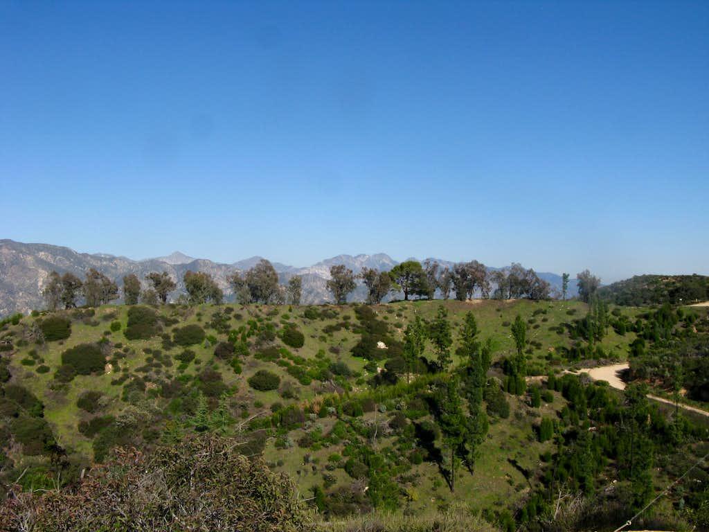 Experimental Forest Verdugo Mountain