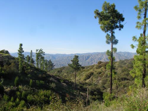 Unusual View Verdugo Mountain