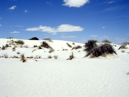 White Sands of New Mexico