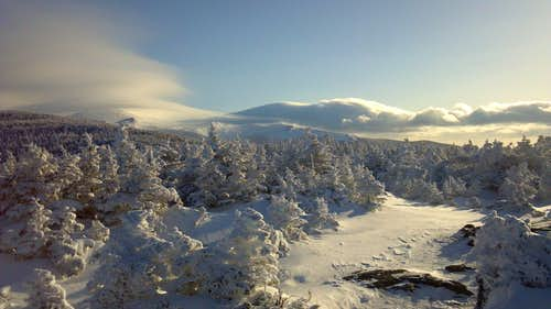 Looking North from Mt. Pierce Summit