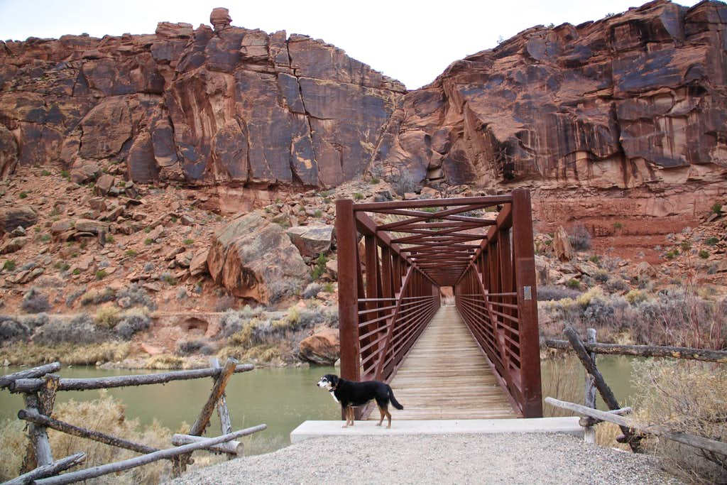 Bridge over Gunnison River