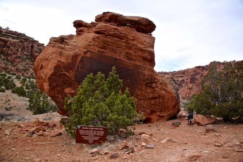 The main petroglyph boulder