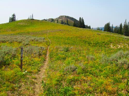 trail along Big Elk