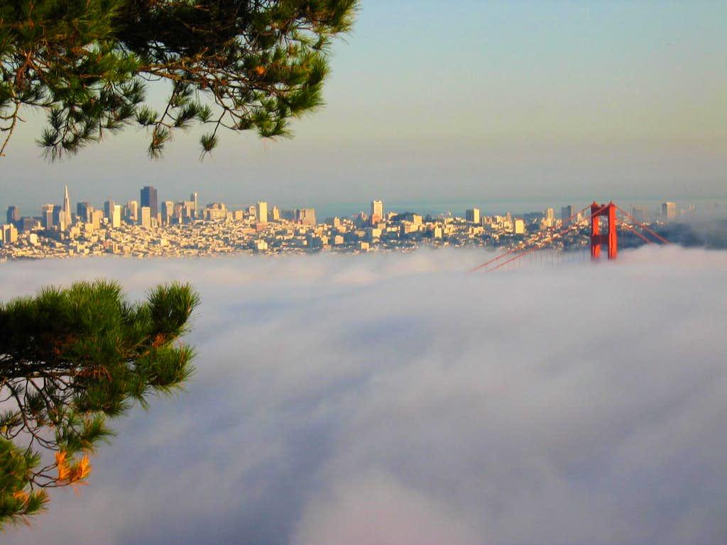 SF from Hawk Hill