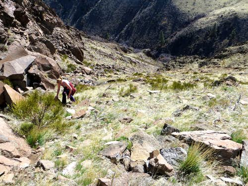 Climbing up the gully