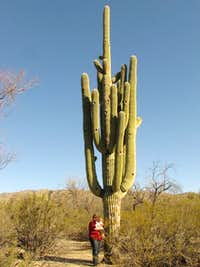That\'s one big cactus!