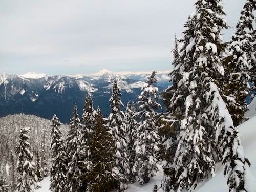 Glacier Peak from Cleveland Mountain