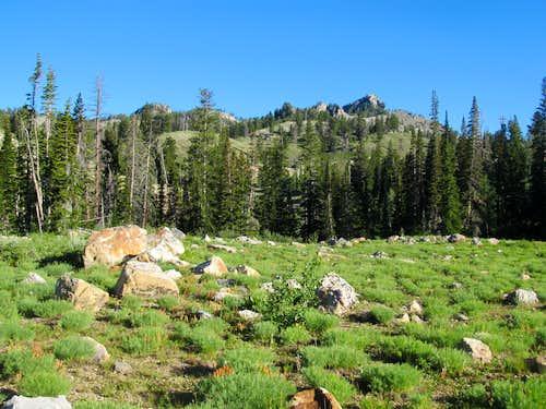 Naomi Peak Trail