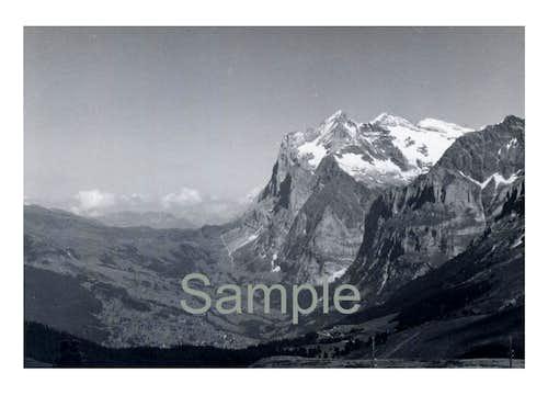Wetterhorn 12142 ft